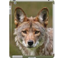 Coyote Portrait  iPad Case/Skin
