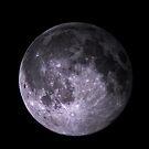 Lunar Portrait by welchko