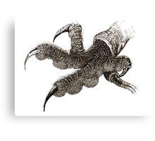 Bird of Prey foot  Canvas Print