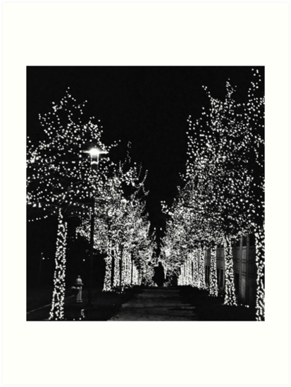The Lighted Path by Amber Finan