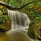 Lower falls by donnnnnny