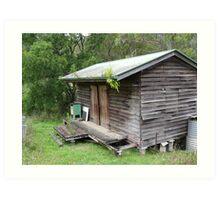 bush shack Art Print
