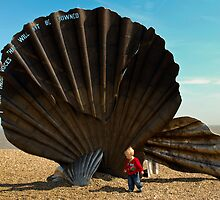 Small boy and shell by PETED60