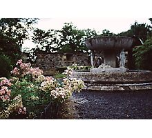 Flowers and a Fountain Photographic Print