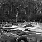 Dwellingup Rapids. by Dejezza