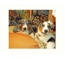 Dogs living the good life! Art Print