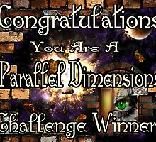 Parallel Dimensions Challenge Winner by AnimiDawn