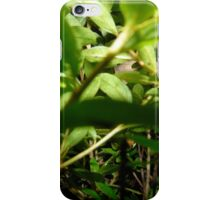 Fairy Land Night Scapes- Frollick In the Foliage iPhone Case/Skin