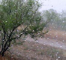 hail by gabbielizzie