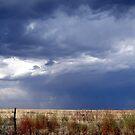 stormy by gabbielizzie