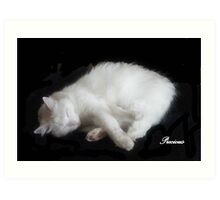 PRECIOUS, ,,MY BEAUTIFUL RESCUED KITTY f..FUNNY SUNDAY....KITTY VIDEO Art Print