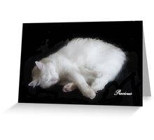 PRECIOUS, ,,MY BEAUTIFUL RESCUED KITTY f..FUNNY SUNDAY....KITTY VIDEO Greeting Card