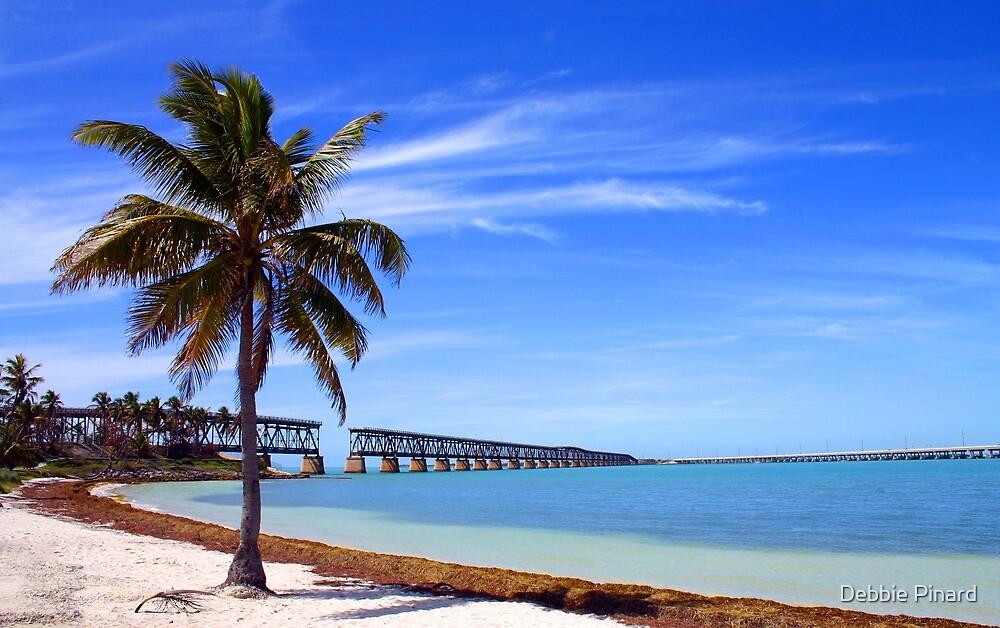 Bahia Honda Park, The Old Train Bridge - Florida by Debbie Pinard