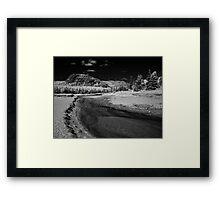 Sand Beach Salt Marsh - Acadia National Park Framed Print