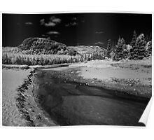 Sand Beach Salt Marsh - Acadia National Park Poster