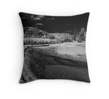 Sand Beach Salt Marsh - Acadia National Park Throw Pillow