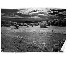 Sunset Field - Blue Ridge Parkway Poster