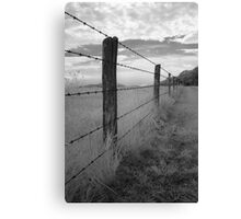 Barbed - Blue Ridge Parkway Canvas Print