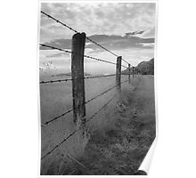 Barbed - Blue Ridge Parkway Poster