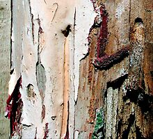 peeling paint photographer by richman