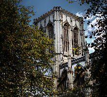 York Minster by David Robinson