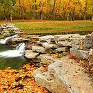 Autumn Ablaze by Gregory Ballos | gregoryballosphoto.com