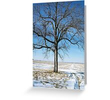 A Winter Prairie Landscape Greeting Card