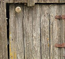 Little Door on a Red Barn by The Accidental Farmers