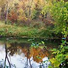 Fox River, Portage Wisconsin by Mona Gainey-Lanier