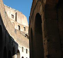 Coliseum,Rome Italy by Margaret  Shark
