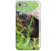 Tabby the Turtle iPhone Case/Skin