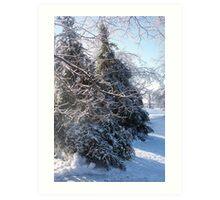 Winter, Decatur IL Art Print