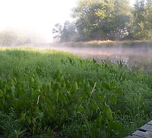 A dock on the Fox River, Portage Wis. by Mona Gainey-Lanier