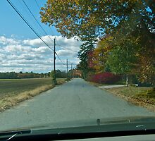 Drive Down Liberty Lane Farm - Fall in Rhode Island by Jack McCabe