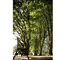 Park Bench Photographic Print