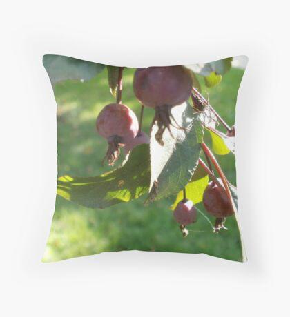 apple tree branch Throw Pillow