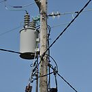 Pole and Wires by Pat Herlihy