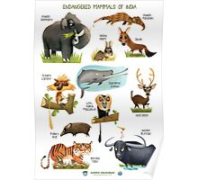 Endangered Mammals of India Poster