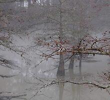 Fog On The Bayou by WildestArt