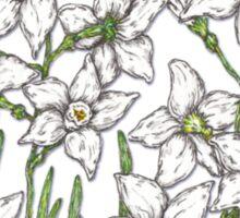 Narcissus Sticker