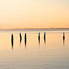 Shornecliffe Sunrise by Mike van der Hoorn