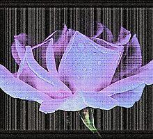 Paper Rose by FeeBeeDee