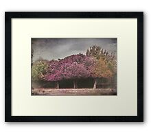 When You Used to Love Me Framed Print