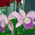Twin Orchids by Betty Mackey