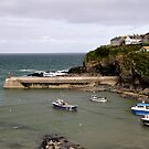 Port Isaac pt2 by Lisa Williams