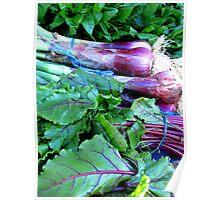 Organic Produce @ Organic Markets Poster