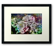 Wild and Wonderful Roses Framed Print
