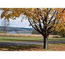 Fall Finery Photographic Print