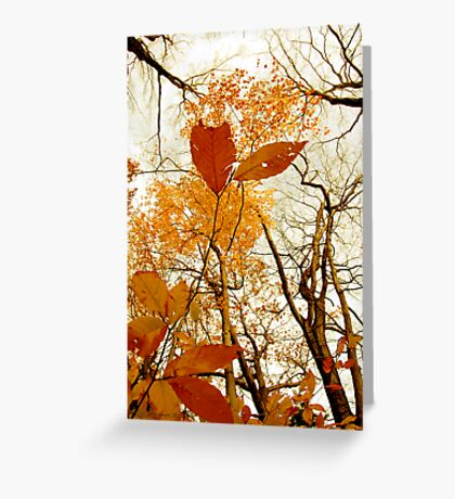 Withering Heights Greeting Card