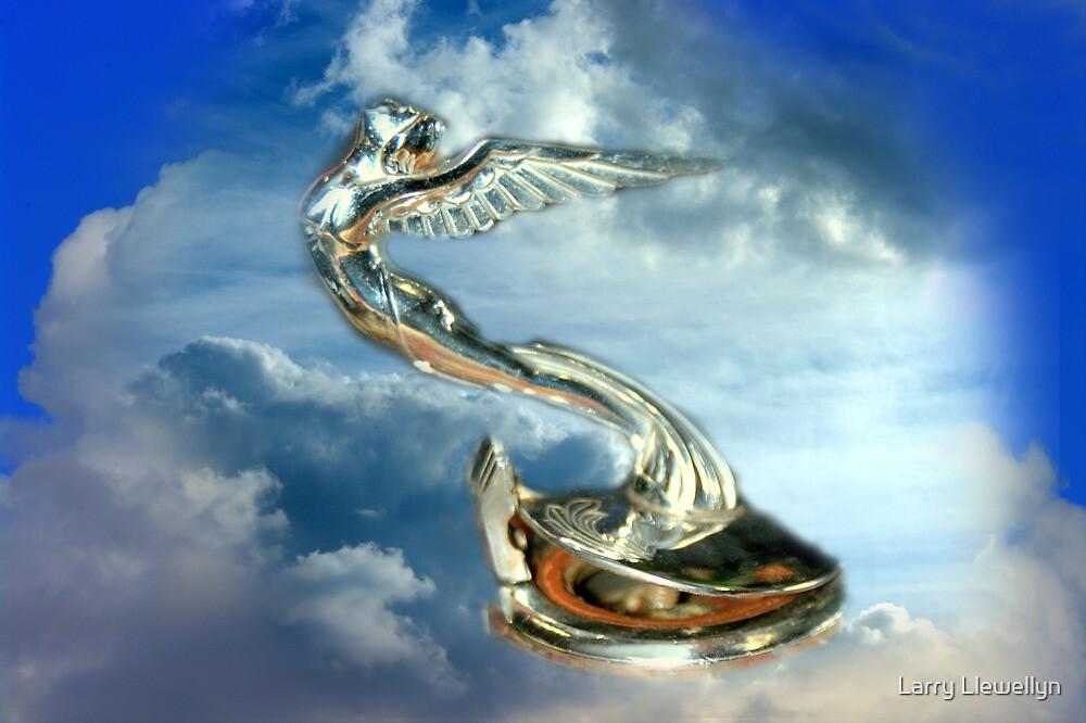 Flying High..... by Larry Llewellyn